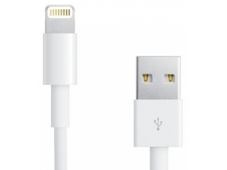 iPhone 8 Plus USB Ladekabel Lightning - Länge 1 m - Weiss